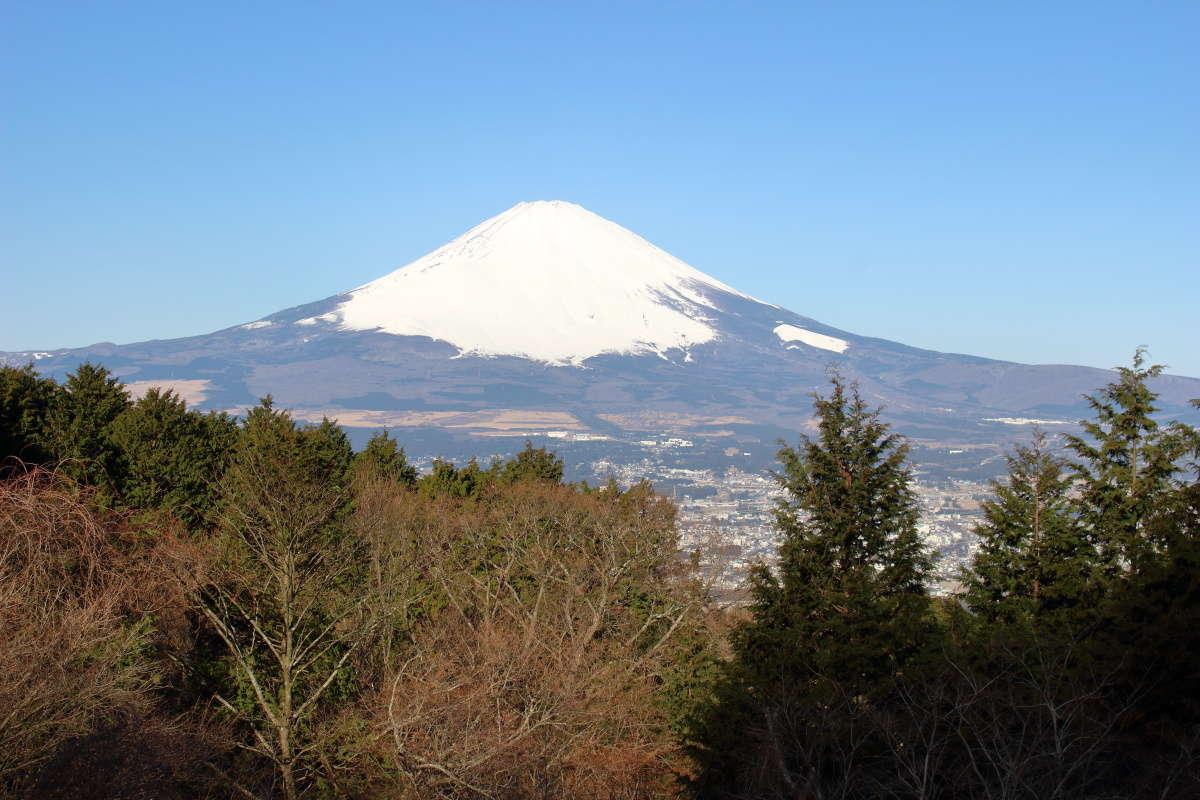 乙女峠バス停からの富士山の絶景!
