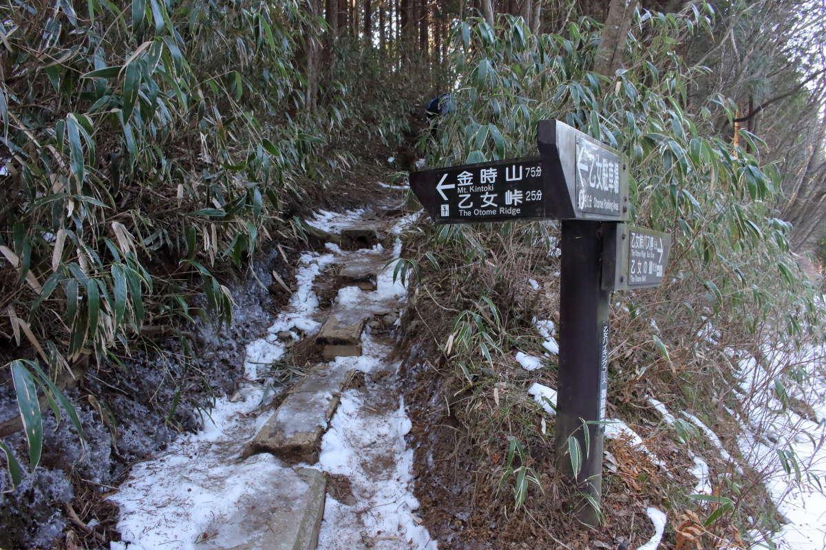 金時山への登山道入り口