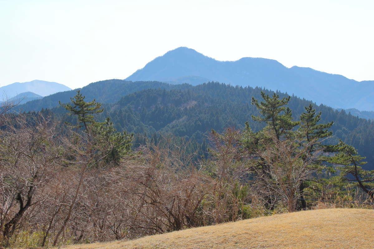 南側には金時山が見えます
