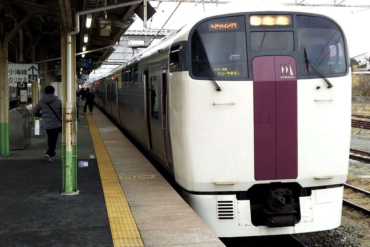 「ホリデー快速ビューやまなし」の215系電車