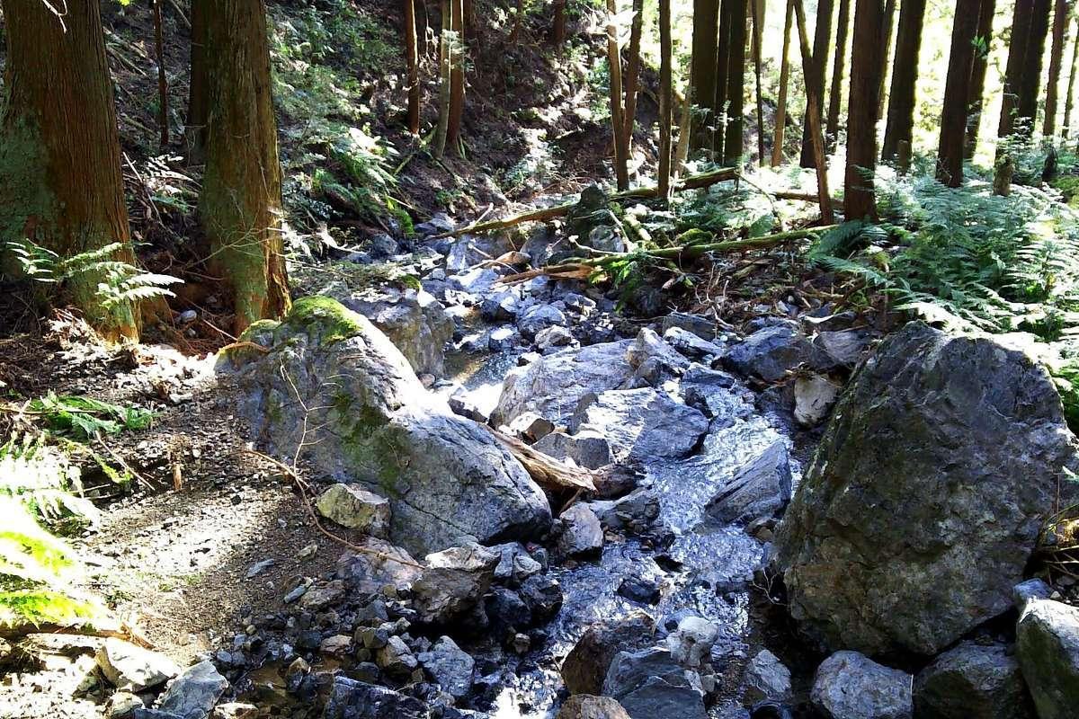 高水山登山口からしばらく続く沢沿いの道は少し荒れています