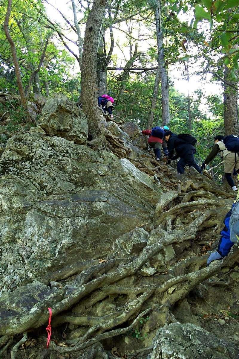 惣岳山山頂直前は急な岩場! 両手を使ってよじ登ります