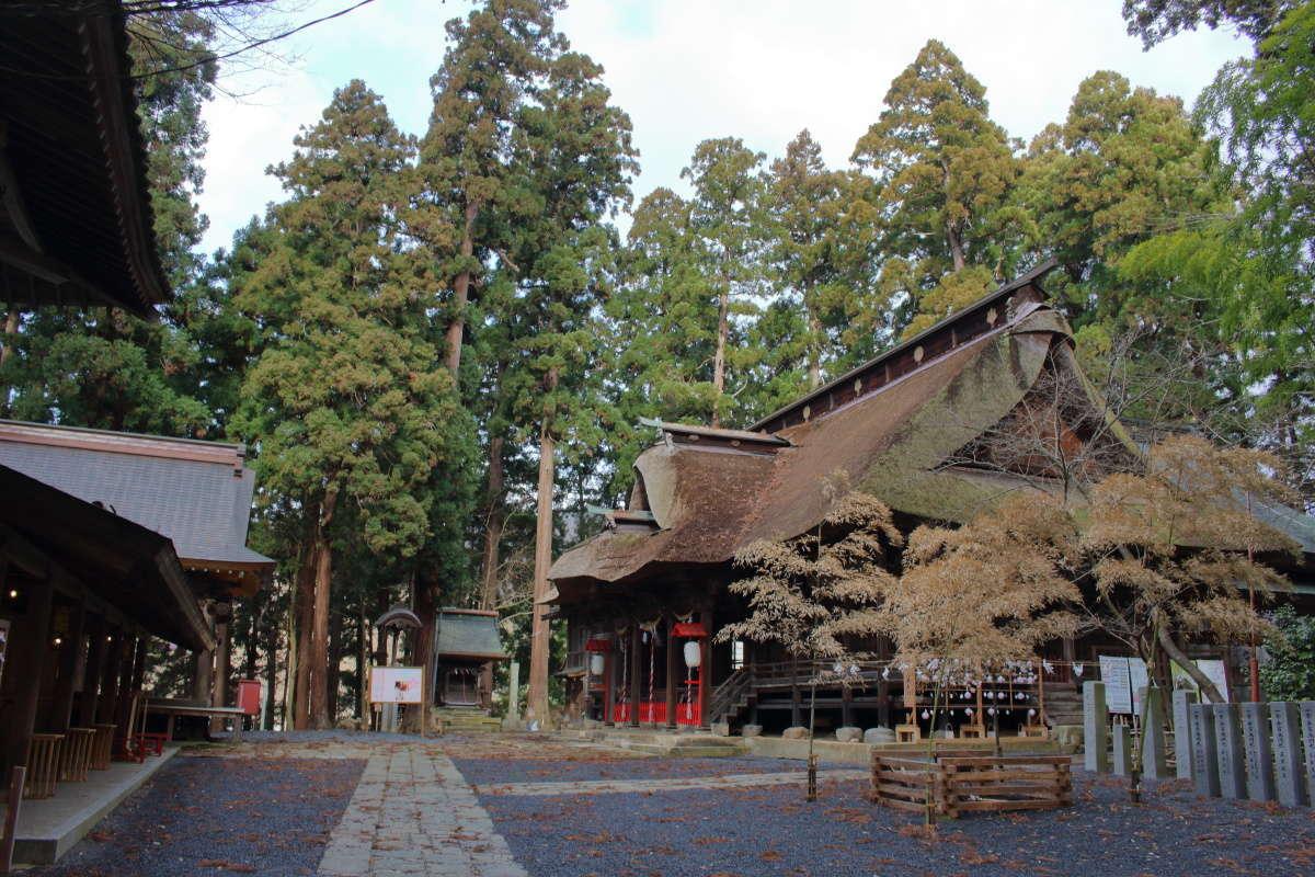 高い杉の木に囲まれている熊野大社の境内