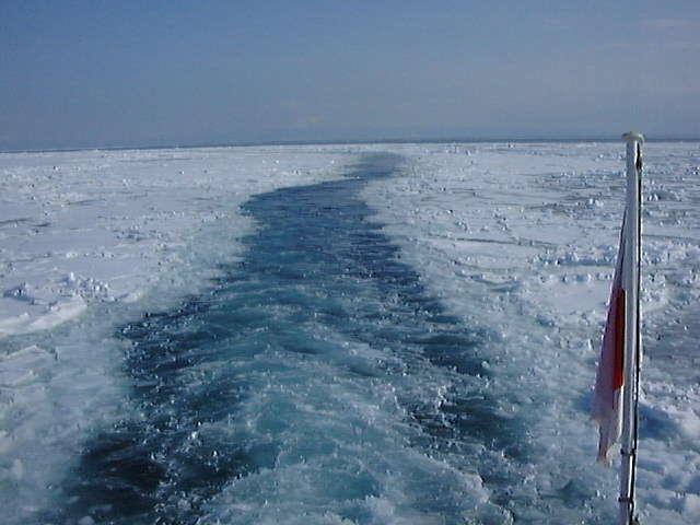 流氷観光砕氷船で流氷をバリバリ割りながら進む!