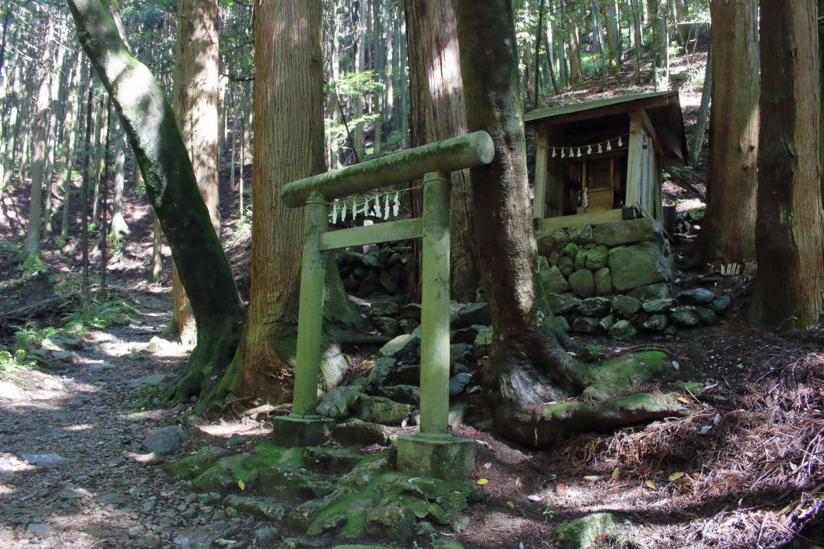 鬱蒼とした森の中にある小さなお社