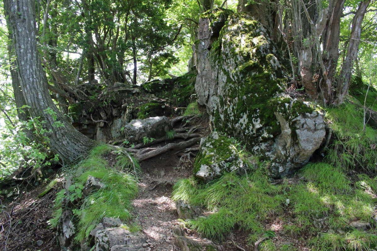 伊豆ヶ岳山頂直下の岩場