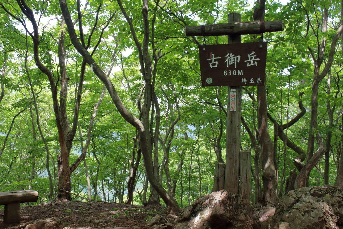 伊豆ヶ岳から30分で次のピーク「古御岳」、眺望はないですがランチにピッタリ