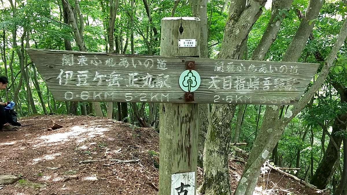 古御岳からゴールの吾野駅までまだ9km以上!先は長い!