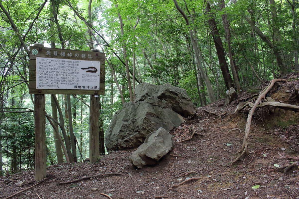 標高490メートルの「天目指峠」