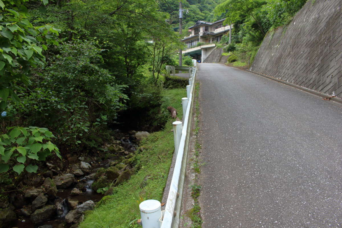 小川沿いの車道をひたすら下ります