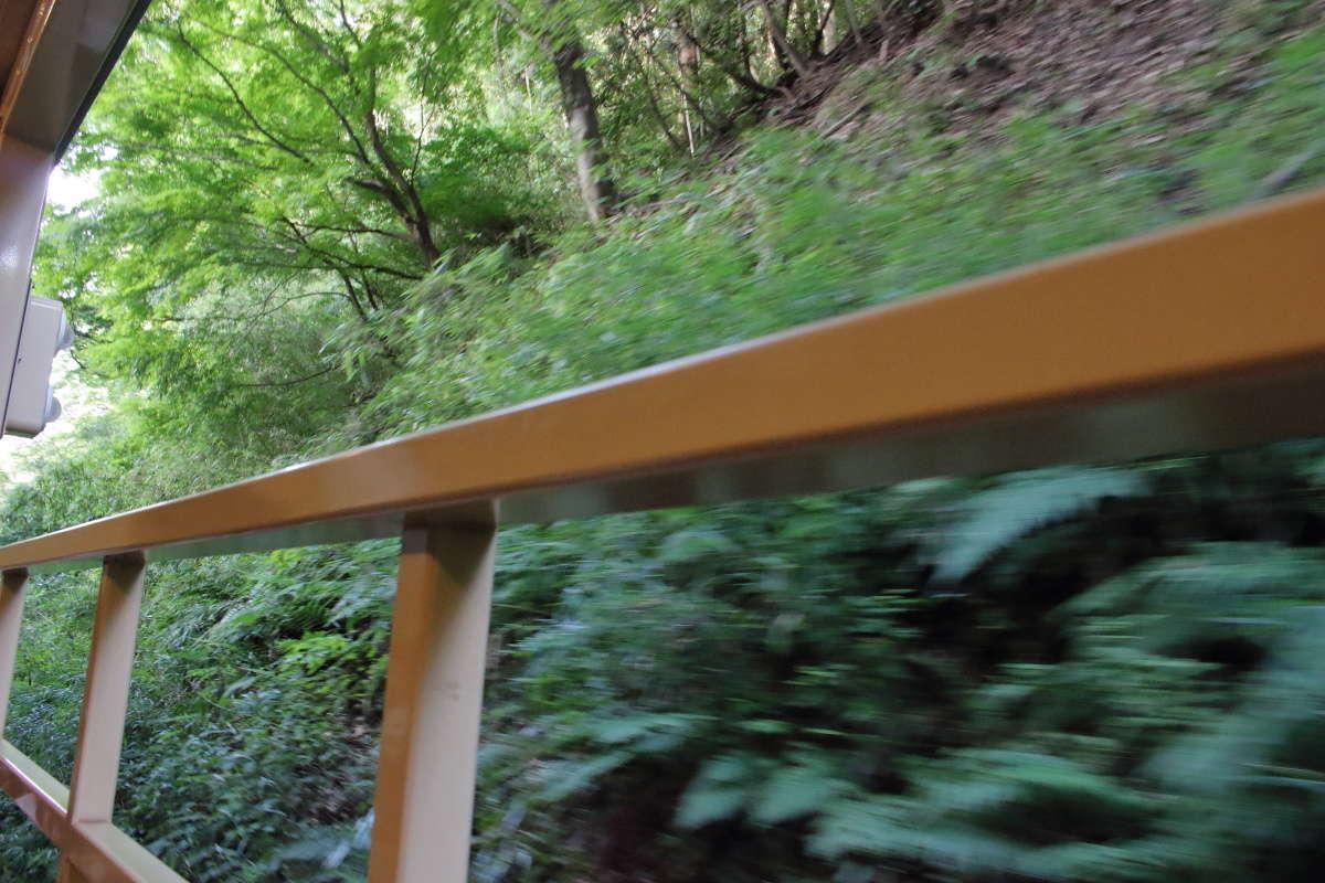 草木のすぐ近くを走る「房総里山トロッコ」