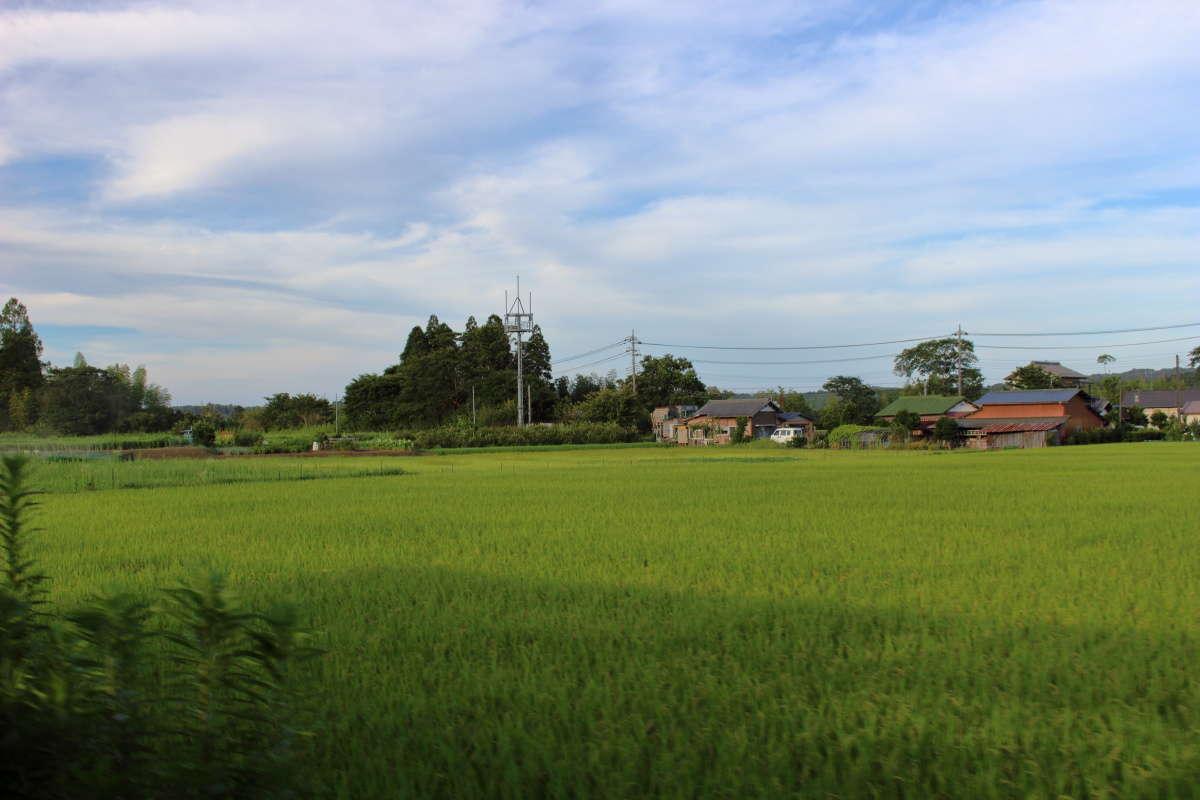 田園風景が広がる車窓、里山を満喫できます