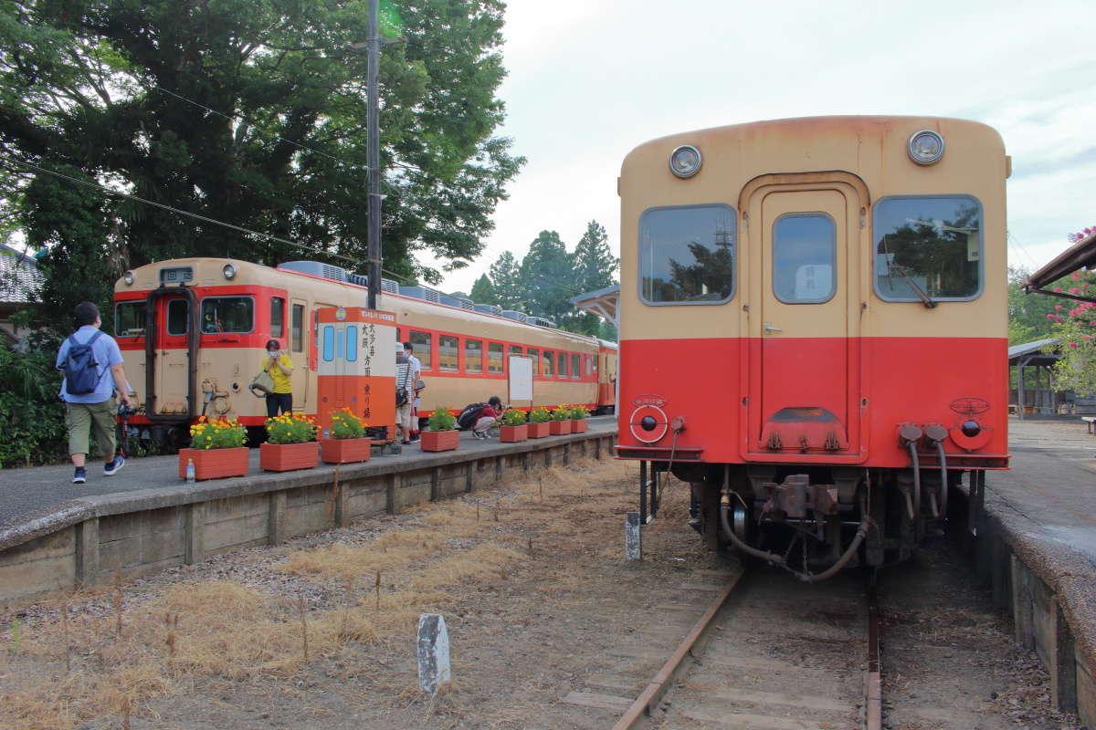 ディーゼルカーが走る小湊鉄道といすみ鉄道(上総中野駅)