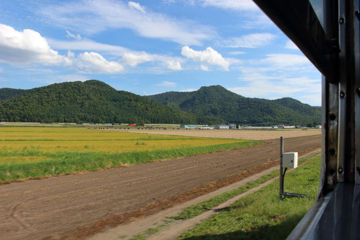 窓を開けて富良野周辺の長閑な車窓を満喫!