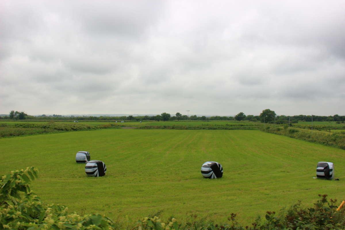広大な牧草地が広がる宗谷本線の車窓