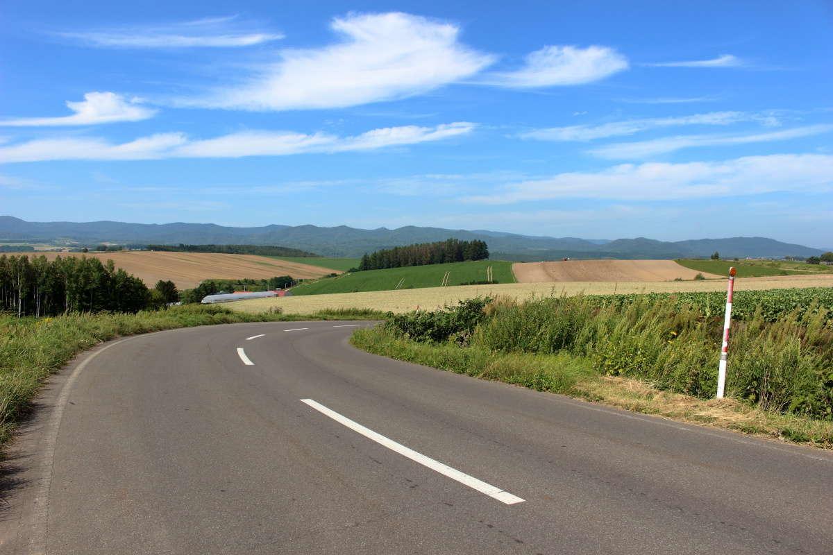 雄大な丘の風景を眺めながらのサイクリング