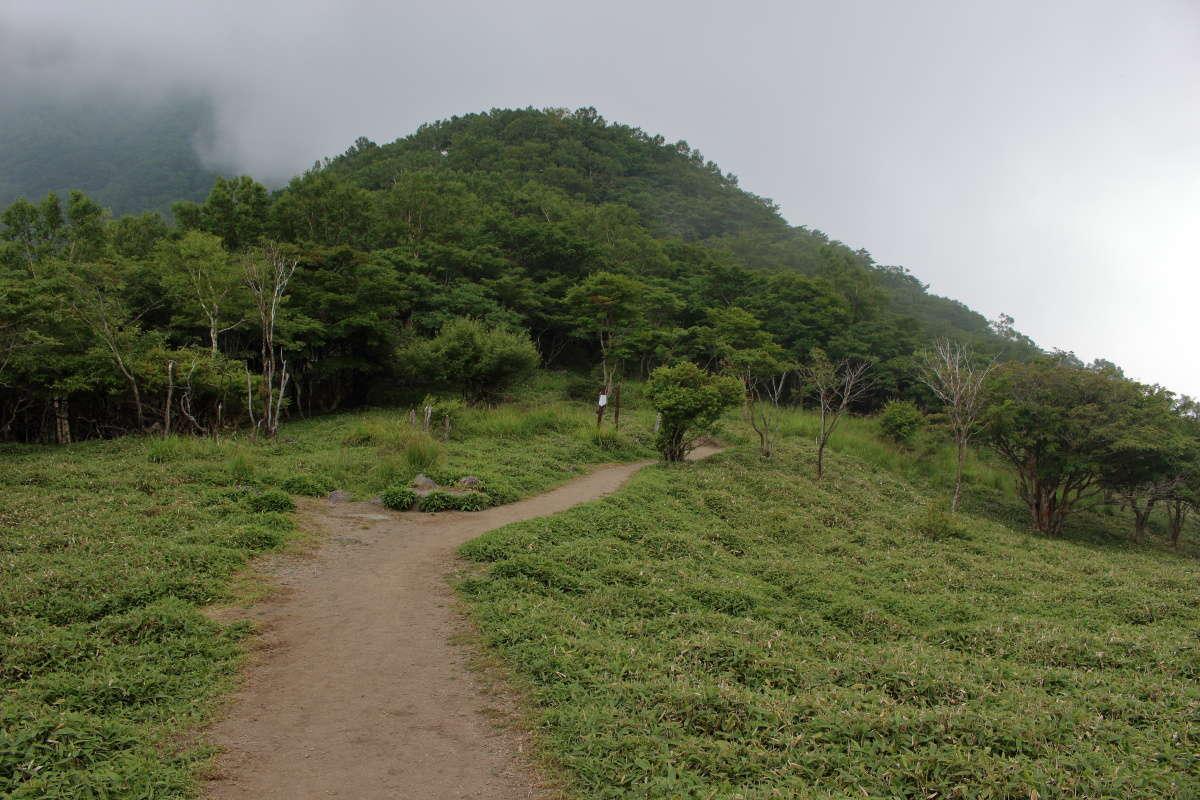 黒檜山→駒ヶ岳途中の開けた広場、ここから駒ヶ岳へ登り返しです