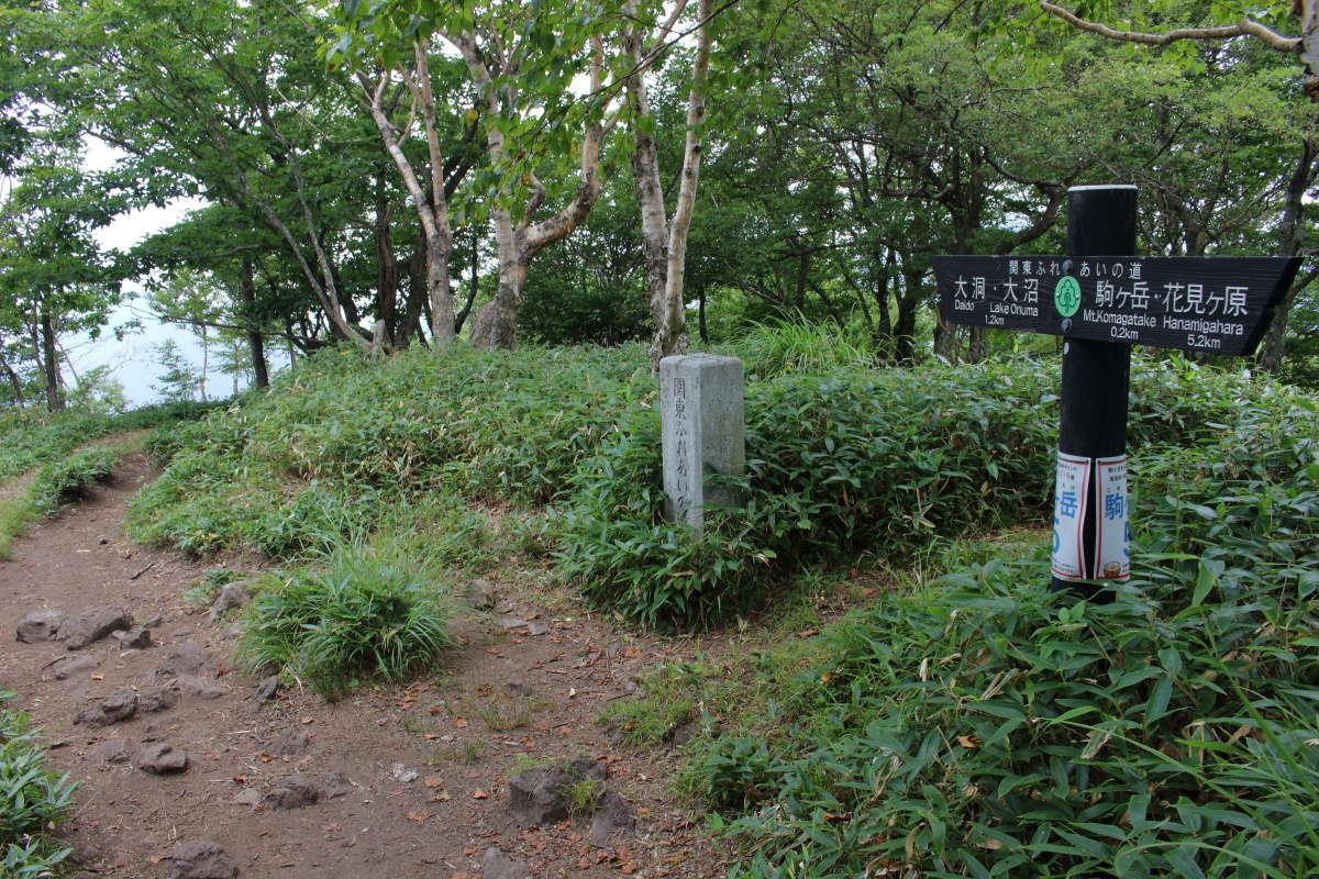 駒ヶ岳山頂から登山口への登山道は歩きやすい道が続きます