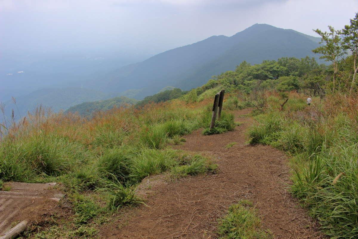 駒ヶ岳の登山道は開けた場所もあります