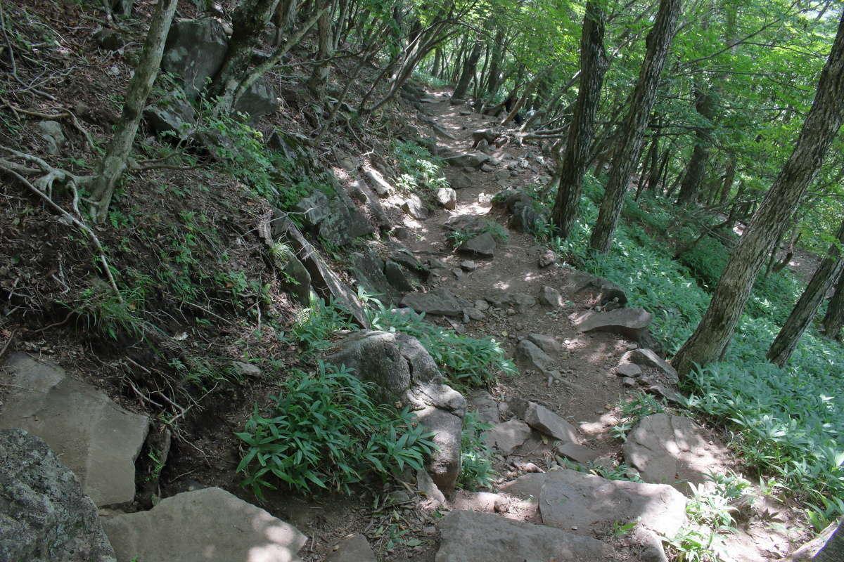 登山口へ向けてジグザグに下っていきます