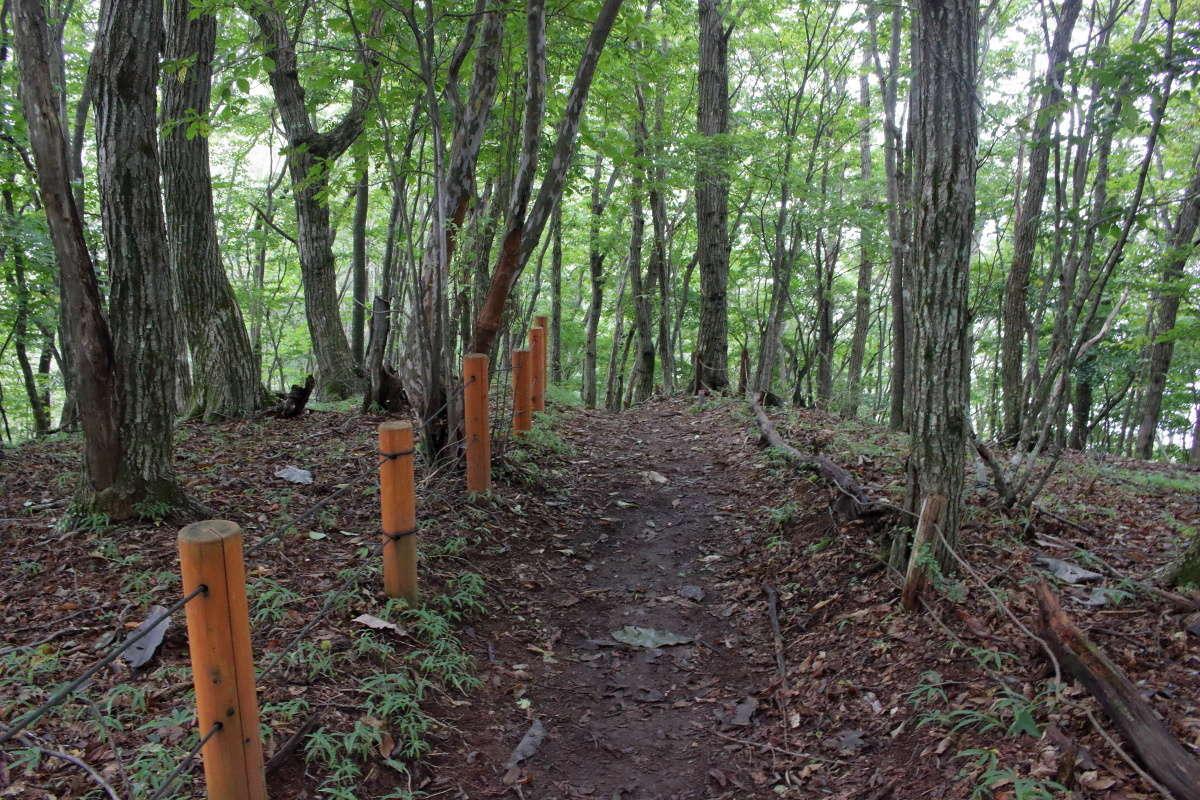 惣岳山から御前山へは整備された歩きやすい道が続きます