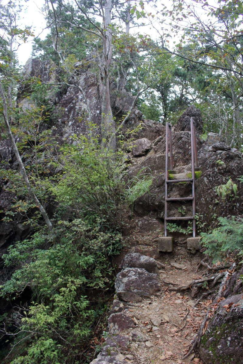 はしごやちょっとした岩場が連続する鋸尾根