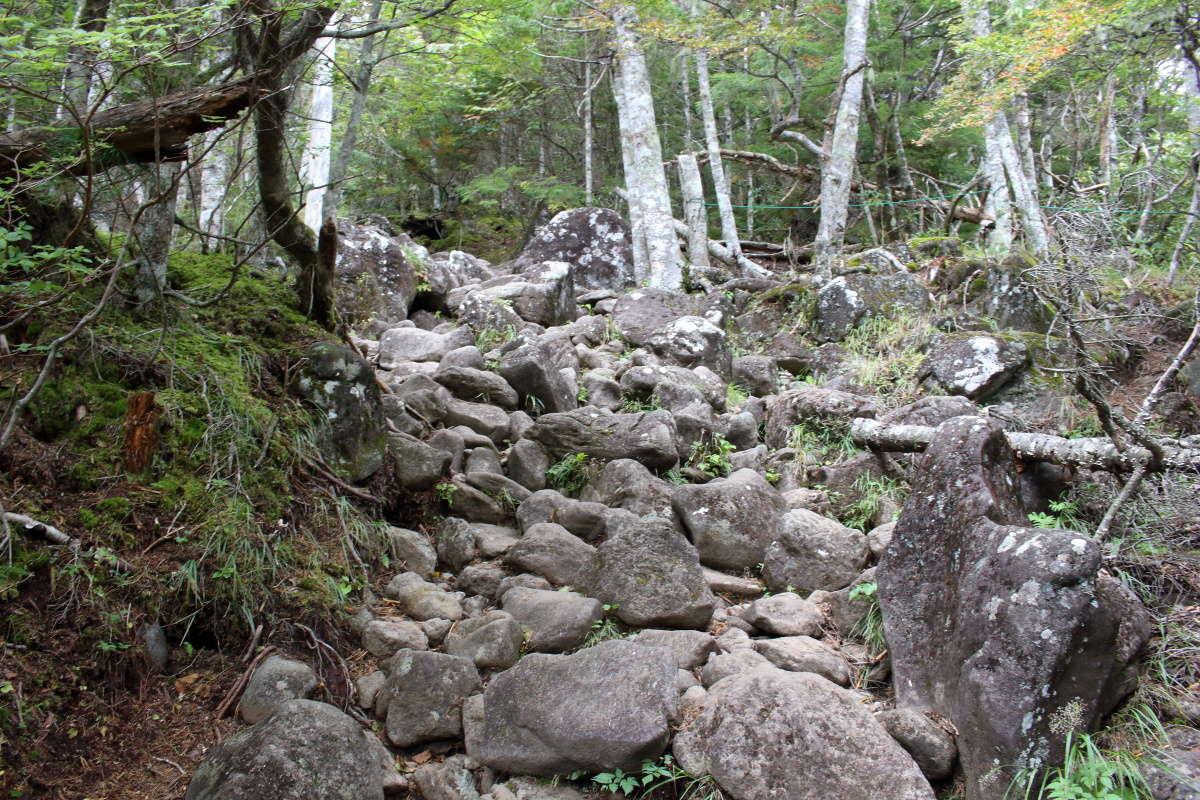 大きな岩がゴロゴロしている急坂も!