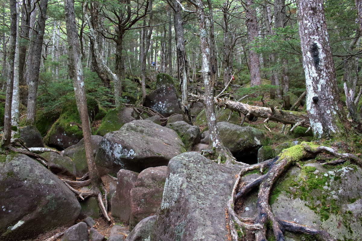 編笠山山頂への最後の試練、大きな岩が転がる急登へ