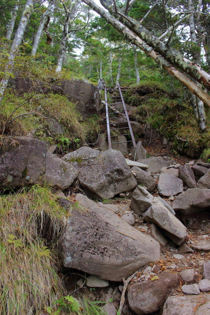 1か所だけあるはしごは慎重に登れば問題なし