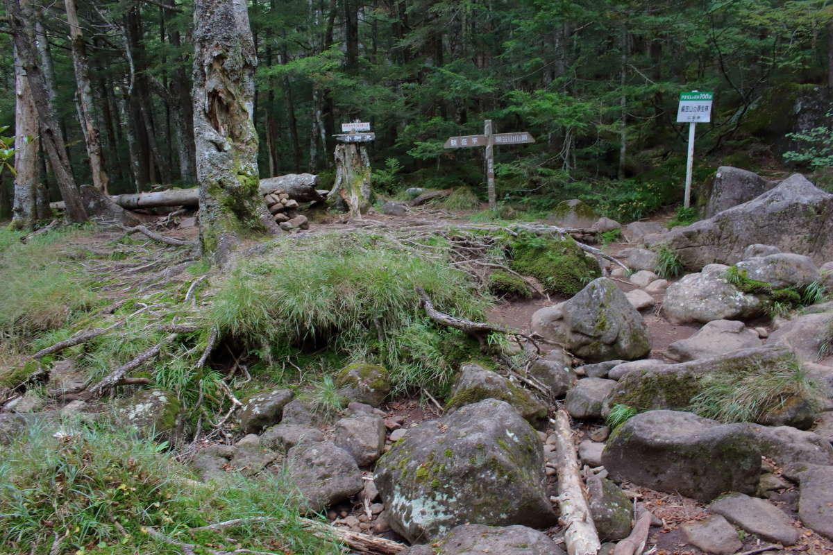 押手川まで下山、登山者は誰もいなくて静寂が包む