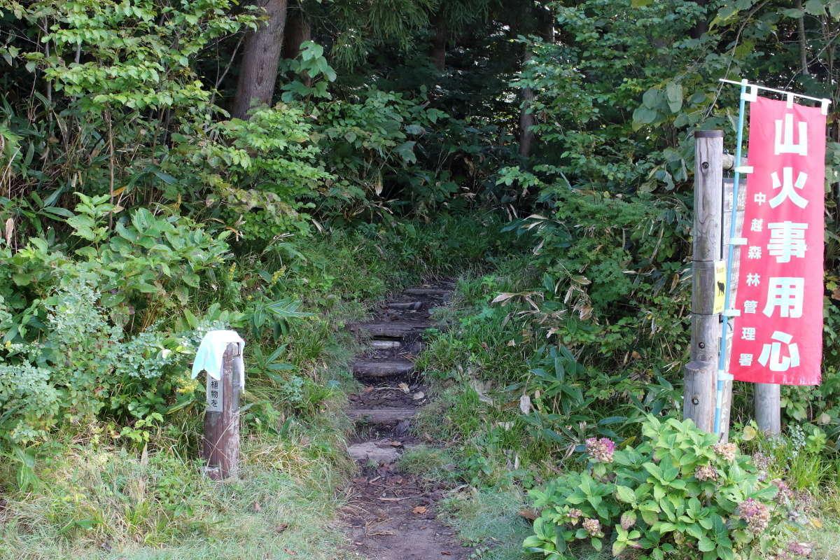 松出山経由で平標山へと至るルートの登山口