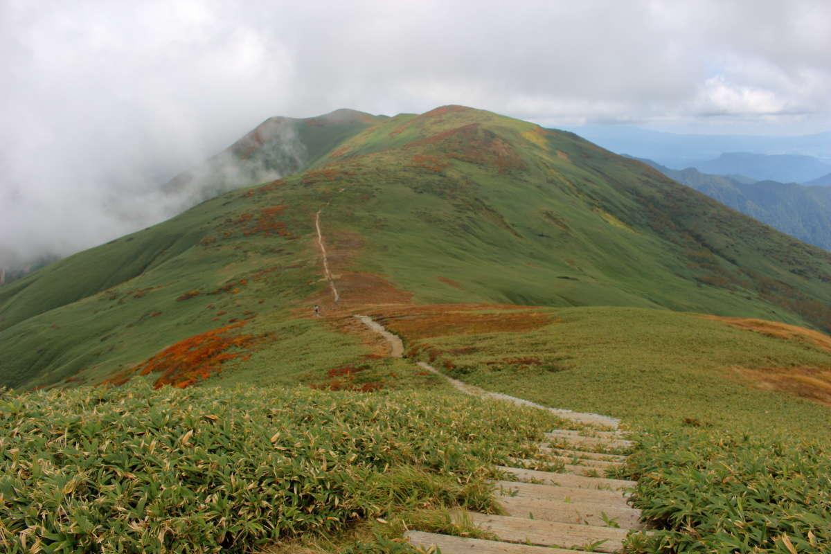 平標山山頂から仙ノ倉山への稜線を眺める
