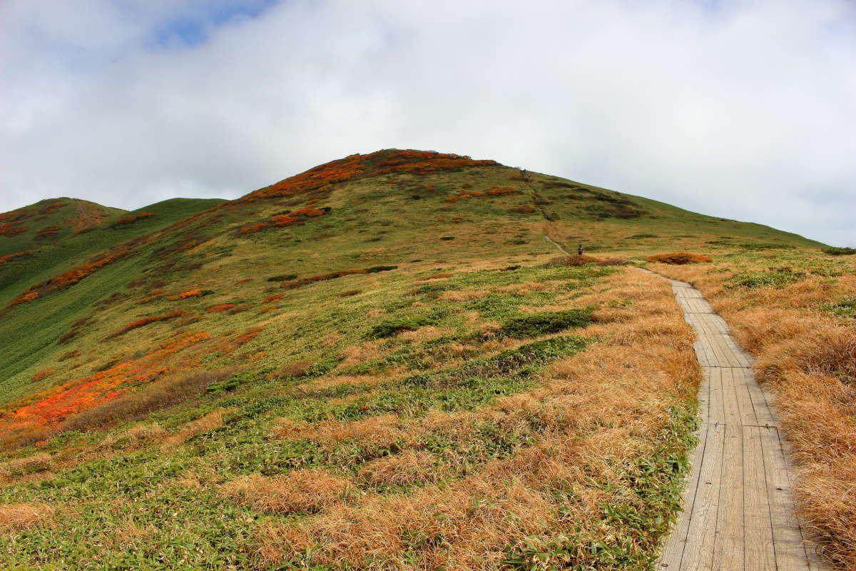 木道が続く仙ノ倉山への快適な稜線歩き