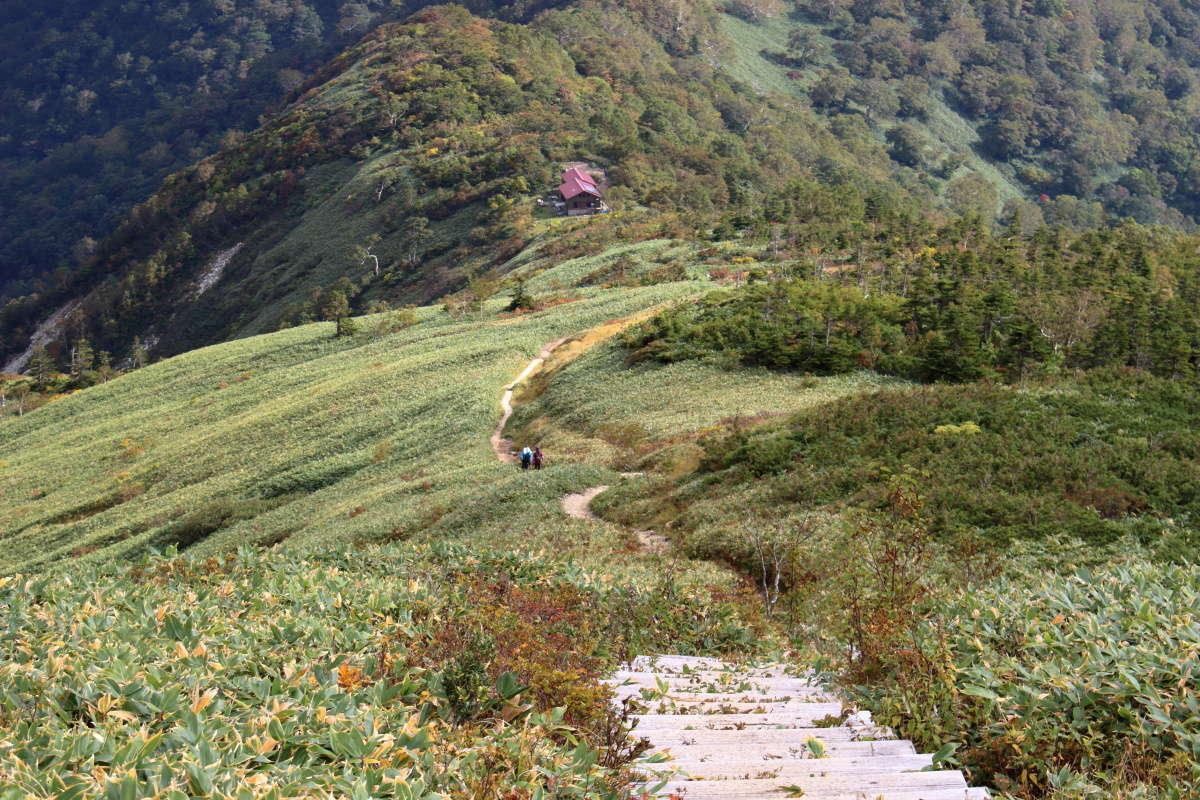 森林限界がよくわかる平標山の家への下り階段