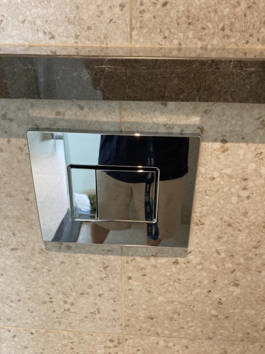 トイレの流すボタン