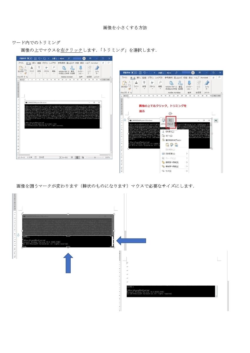 f:id:l-expanse:20210130161907j:plain