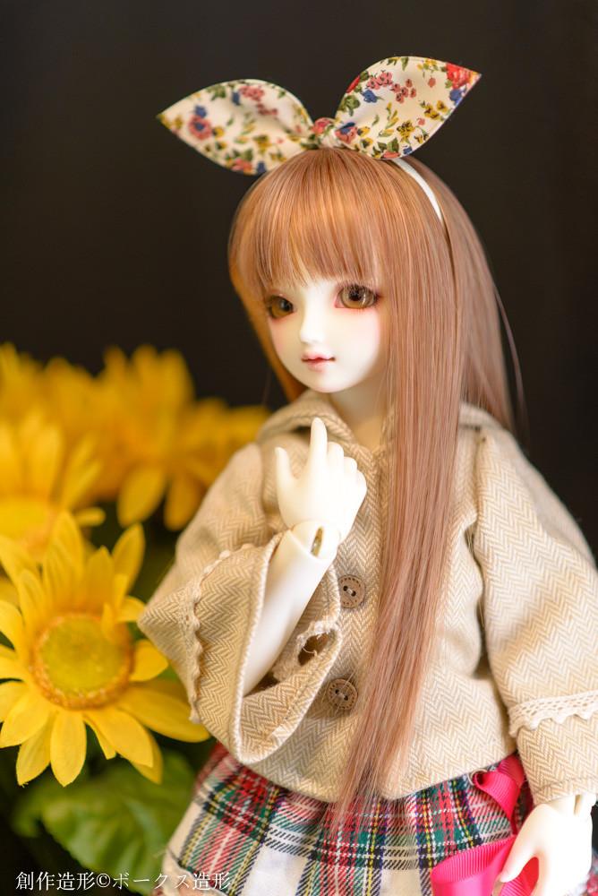f:id:l_912y:20161222214137j:plain