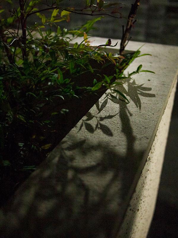 f:id:l_ange_dechu:20140624011932j:image