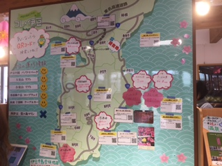 伊豆半島桜案内