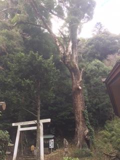 白山神社遙拝所 山中の本宮社への登り口