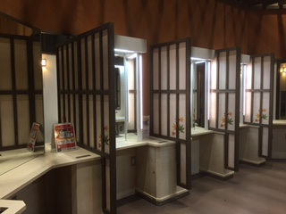 化粧室(トイレ内に設置)
