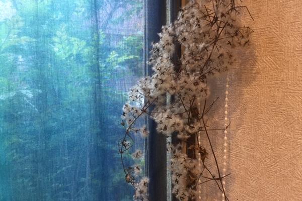 隠れ家カフェ絶品ランチ~松戸周辺の方必見!季節の素材でおもてなし カフェじぇりびんず