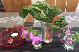 テーブルの上。庭のカタバミと紫蘭、茎がピンクのストライプの葉っぱはスイスチャード
