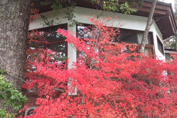 小道の紅葉と道標