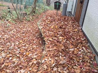 山荘入り口、ベランダの落ち葉