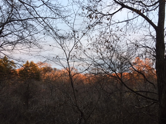 リビングから遠くの夕日を浴びた山々