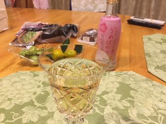 梅酒と碓氷峠のちから餅