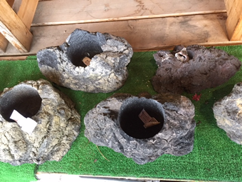 浅間山の溶岩石を利用した鉢