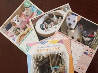 動物愛護団体を応援するカレンダー募金