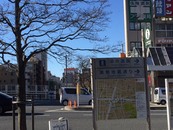 巣鴨駅前の案内板 桜並木通り